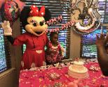 Houston mascot party rental for appearances for birthday parties with costumed characters.