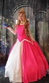 houston sleeping beauty princesses birthday parties
